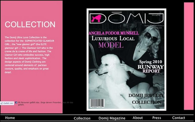 Domji's website was built using a Wix.com Flash template