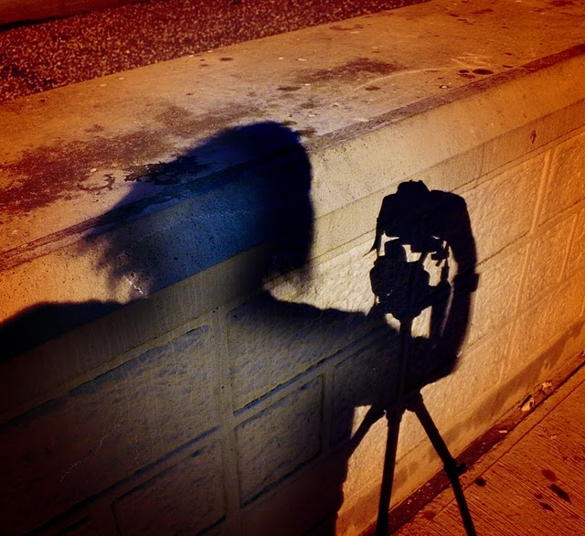 Stabilising Your Camera for Crisper Shots