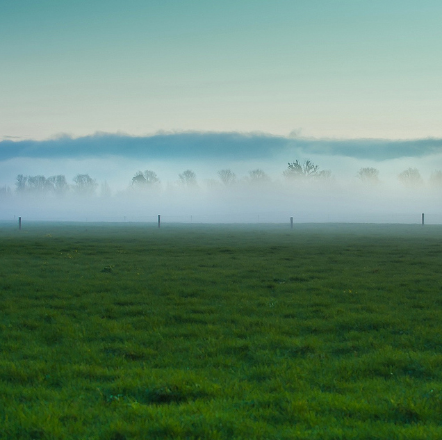 Photo of field By ►CubaGallery