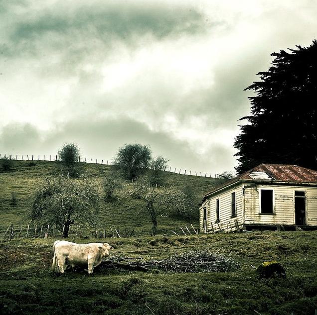 farm Photo By ►CubaGallery4