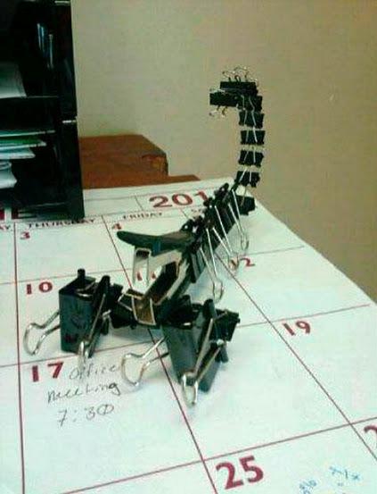 Office scorpion