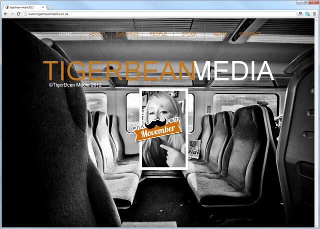 tigerbeanmedia.co.uk