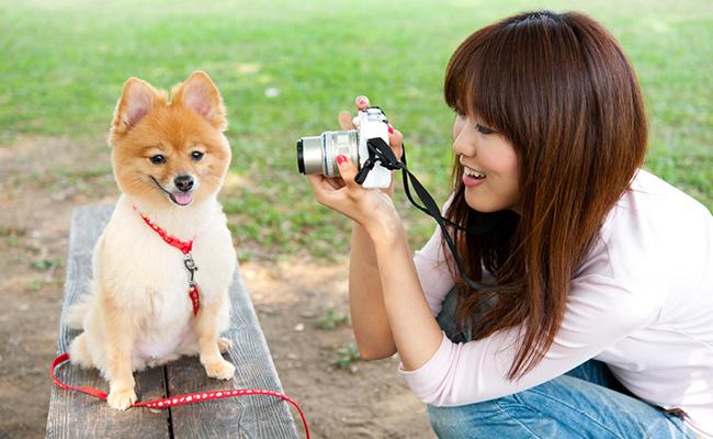 10 Pro Tips for Amateur Photographers
