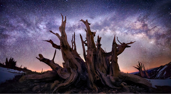 Milky Way in the White Mountains, California, by Marc Adamus