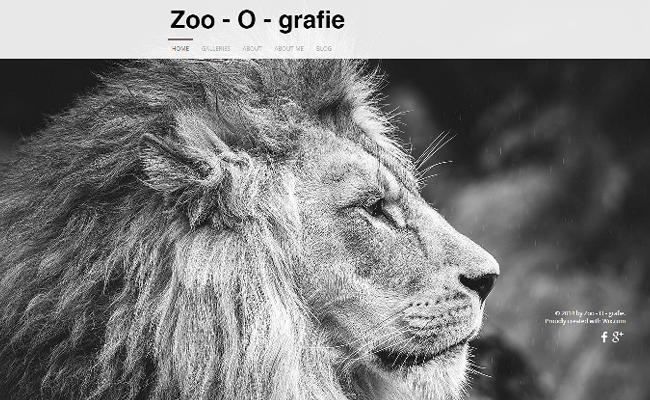 Zoo - O - Grafie