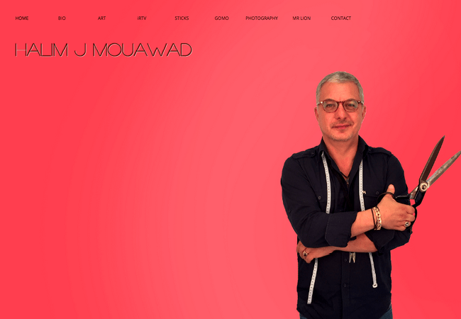 Halim J Mouawad