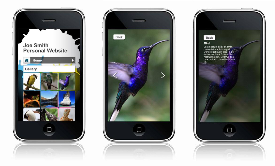 User Friendly Mobile Web Design