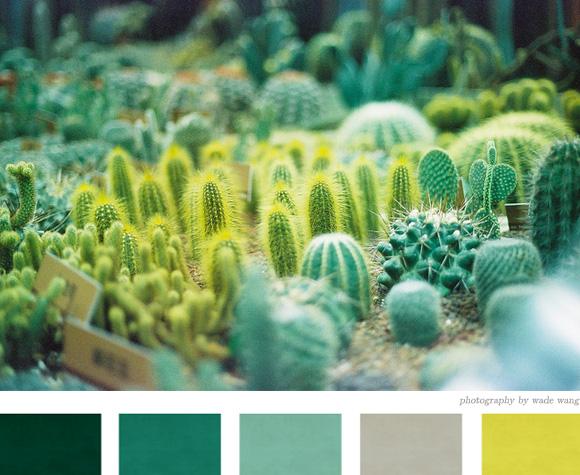 Paleta de colores Verdes