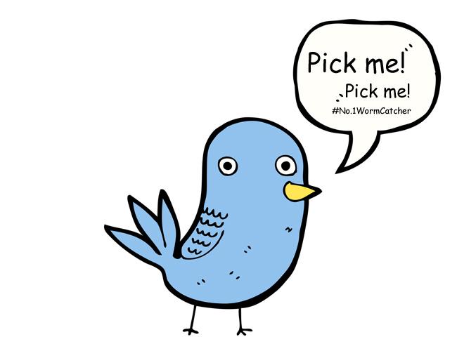 bird saying pick me!