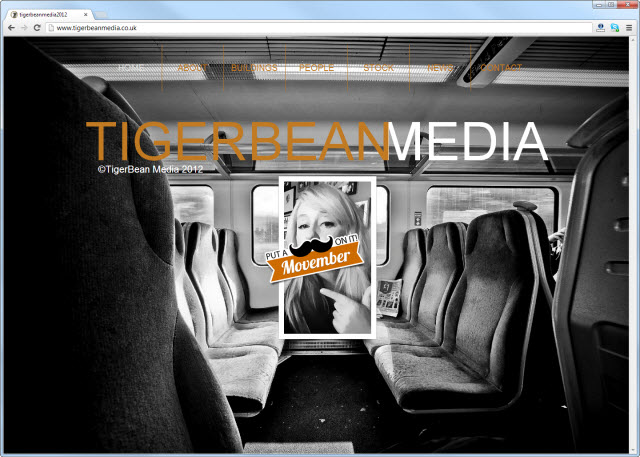 tigerbeanmedia.co.uk