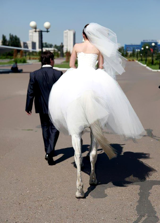perfectly timed photos bride on horse