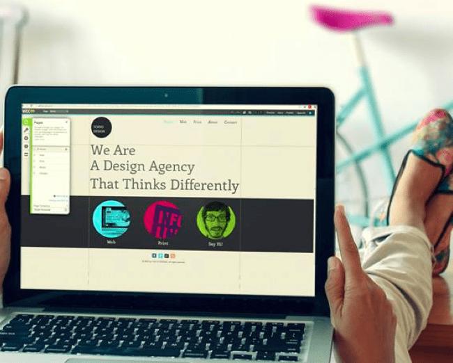 Web designers using Wix