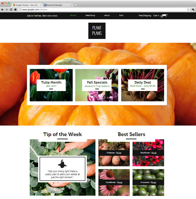 The Seed Shop Template
