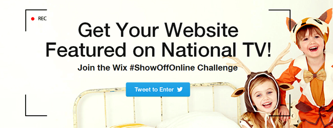Ready for your Business to be Famous? Join the #ShowOffOnline Challenge!