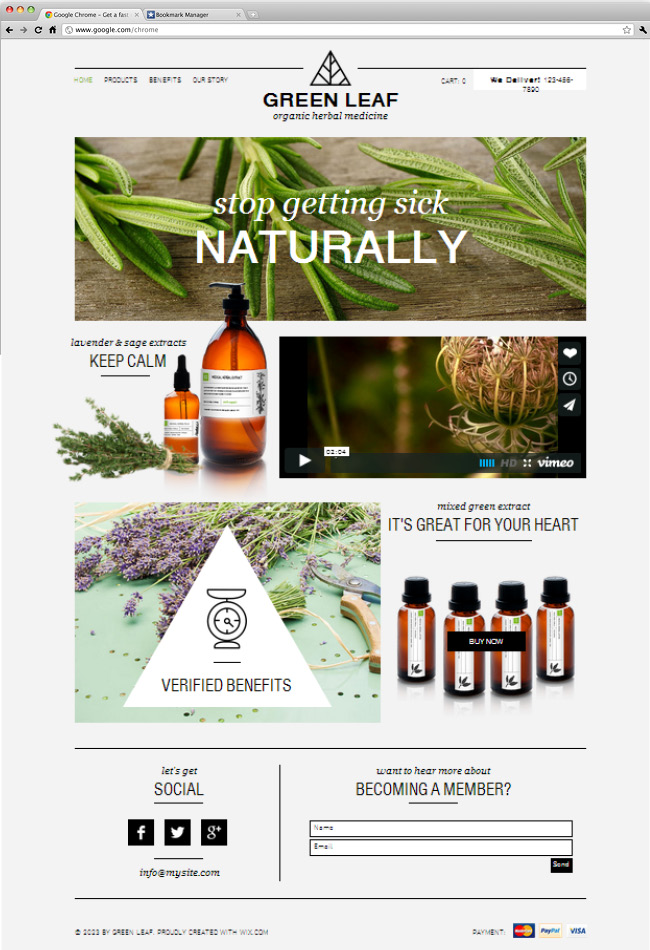 26 beautiful website templates for small businesses herbal shop accmission