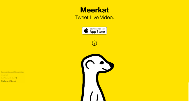The Meerkat app could be your new BFF