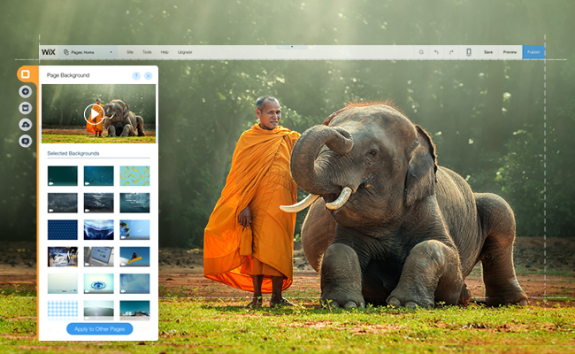 Images, Video & More: All the Free Media Available In the Wix Editor
