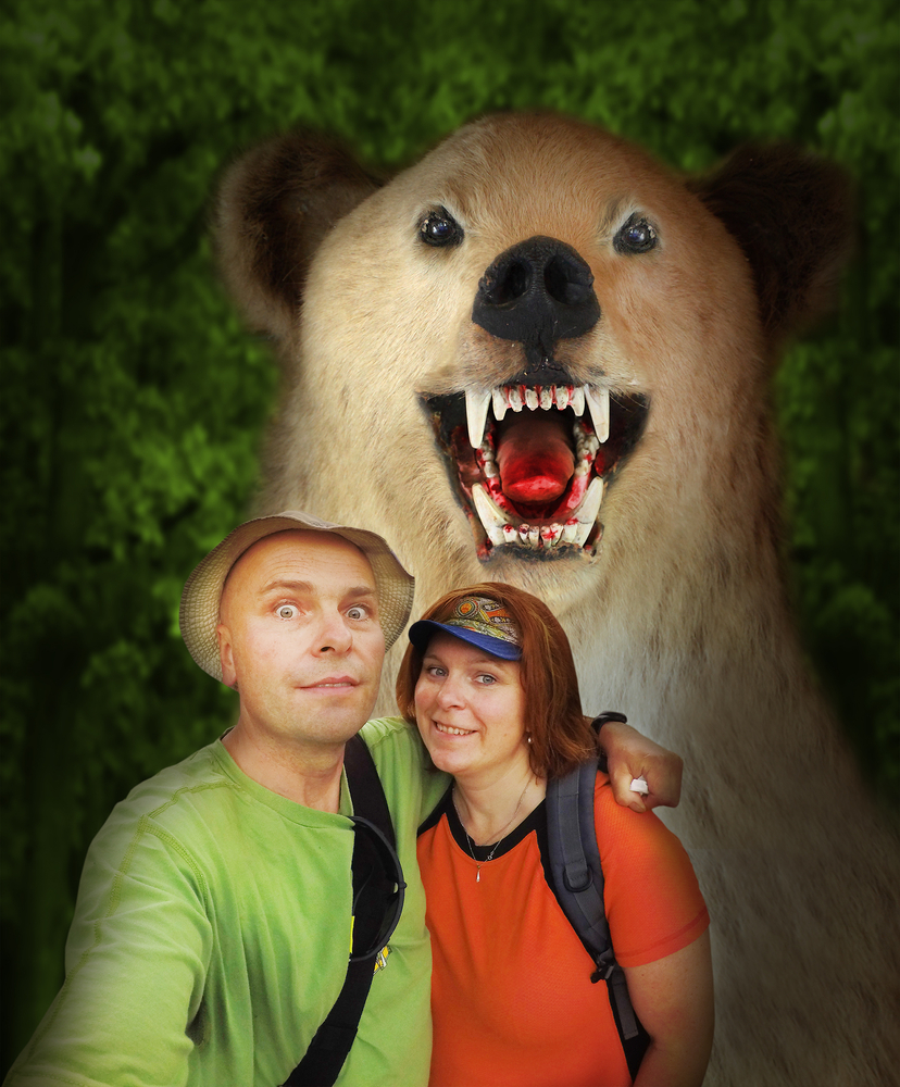 Weird stock photo: bear photobomb