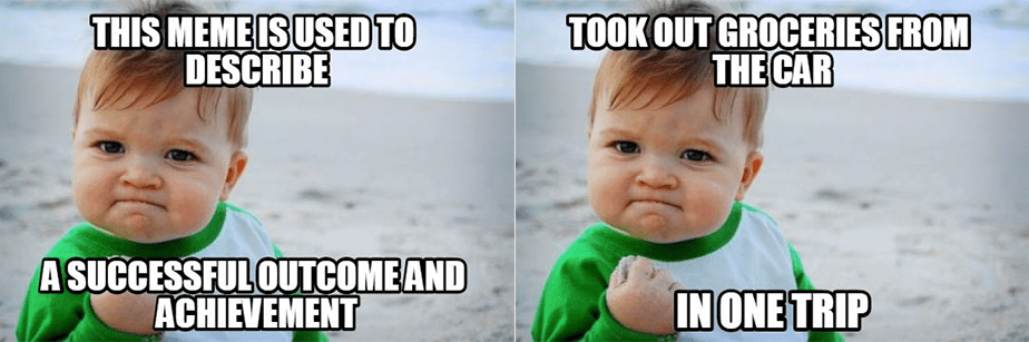 Success Kid Meme