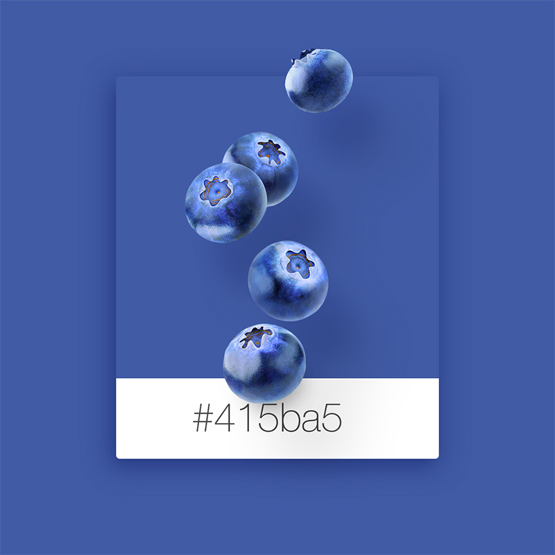 Wix Pinterest color inspiration: blueberries