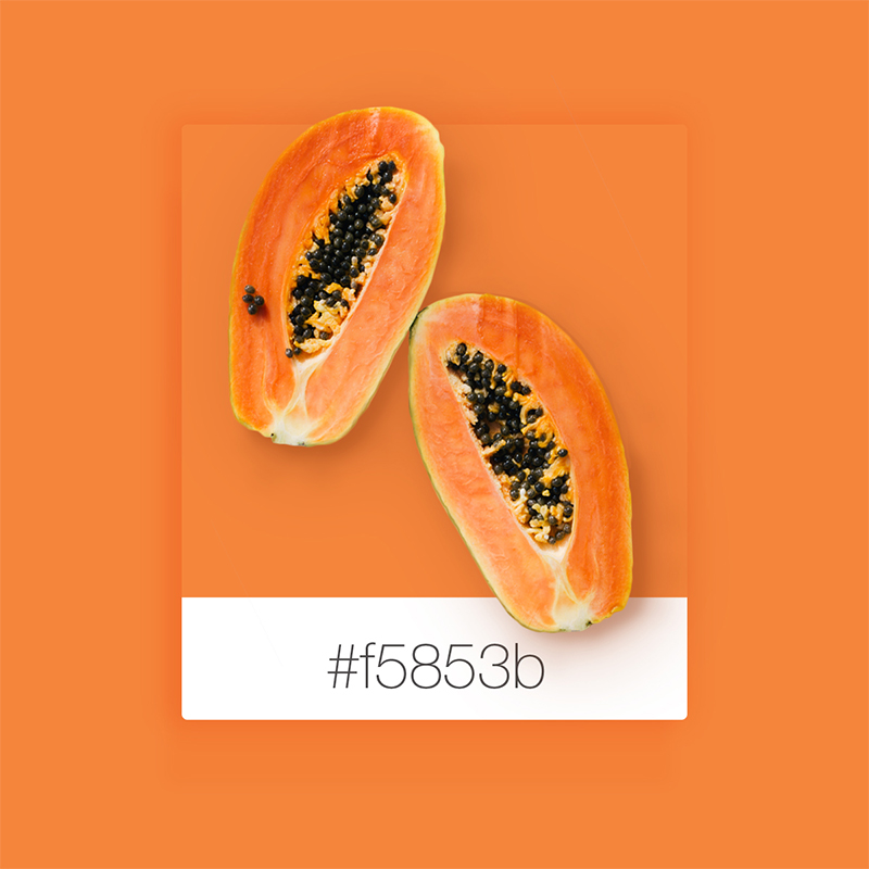 Wix Pinterest color inspiration: papaya