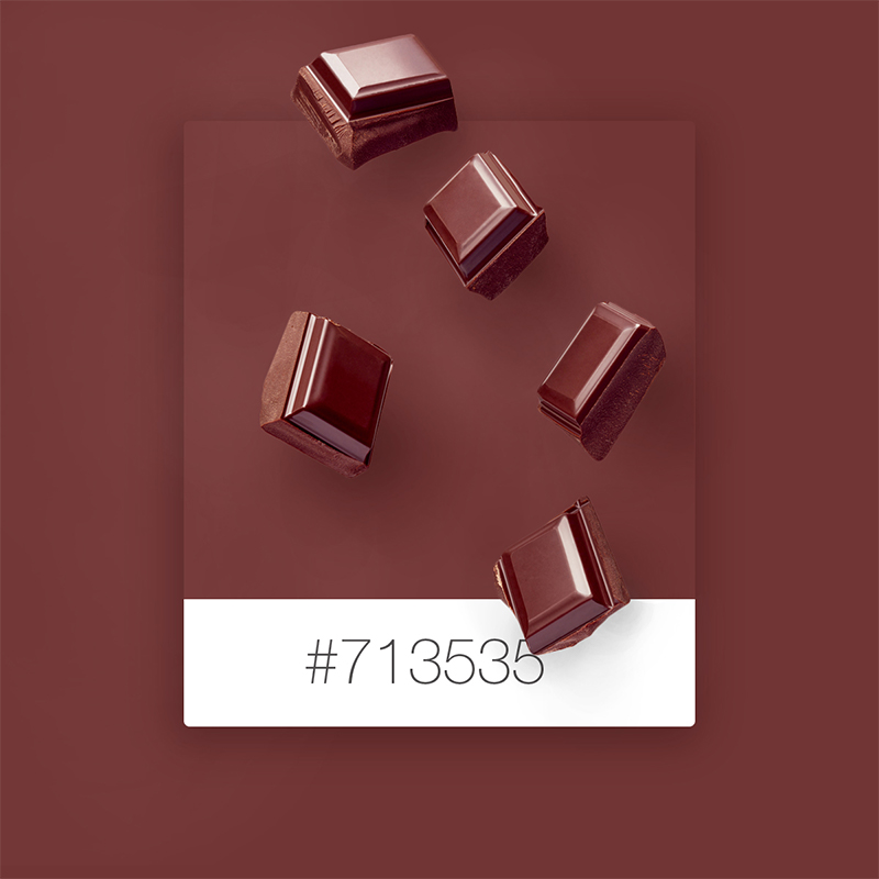 Wix Pinterest color inspiration: chocolate