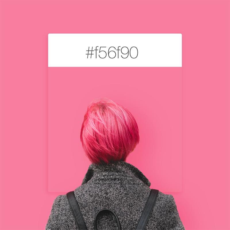 Wix Pinterest color inspiration: pink