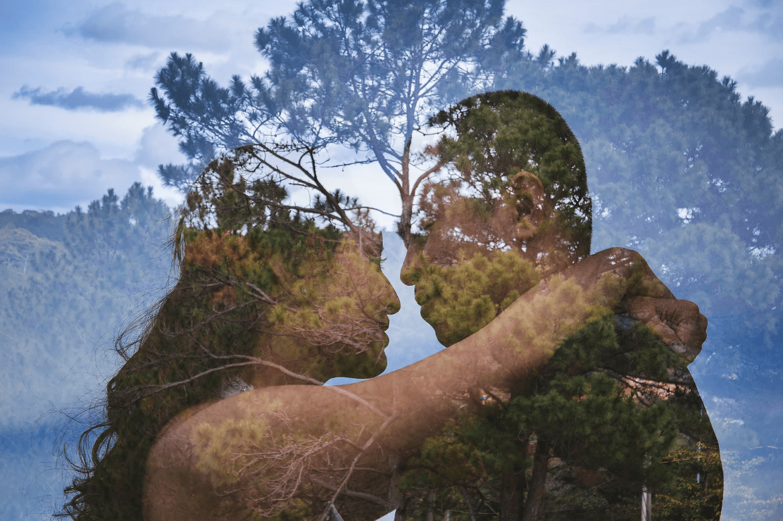 Thai Pham Wix Wedding Photographer Trees