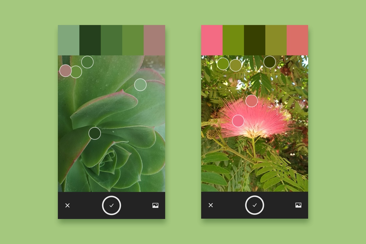 Picking a color palette with Adobe Capture app