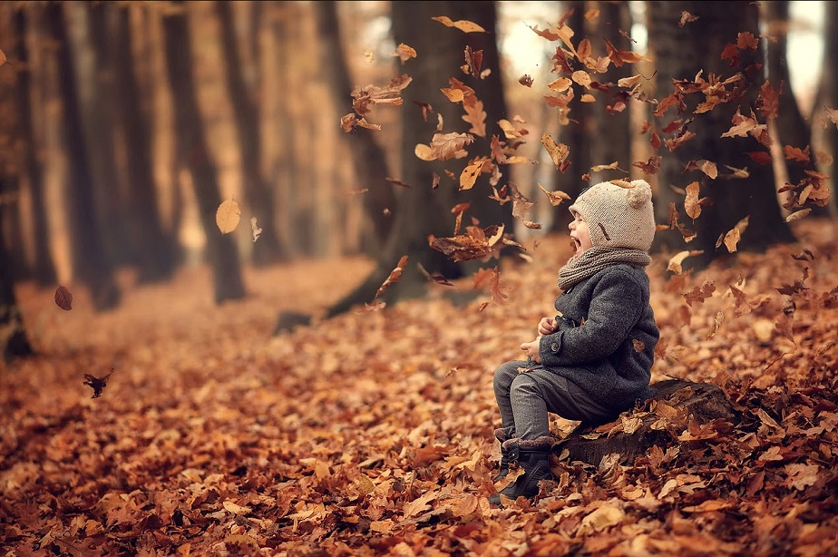 child with autumn leaves by wix photographer kuzilova