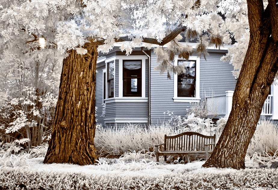 Beautiful Infrared Photography of Trees and House by Wix Photographer Heidi Gile