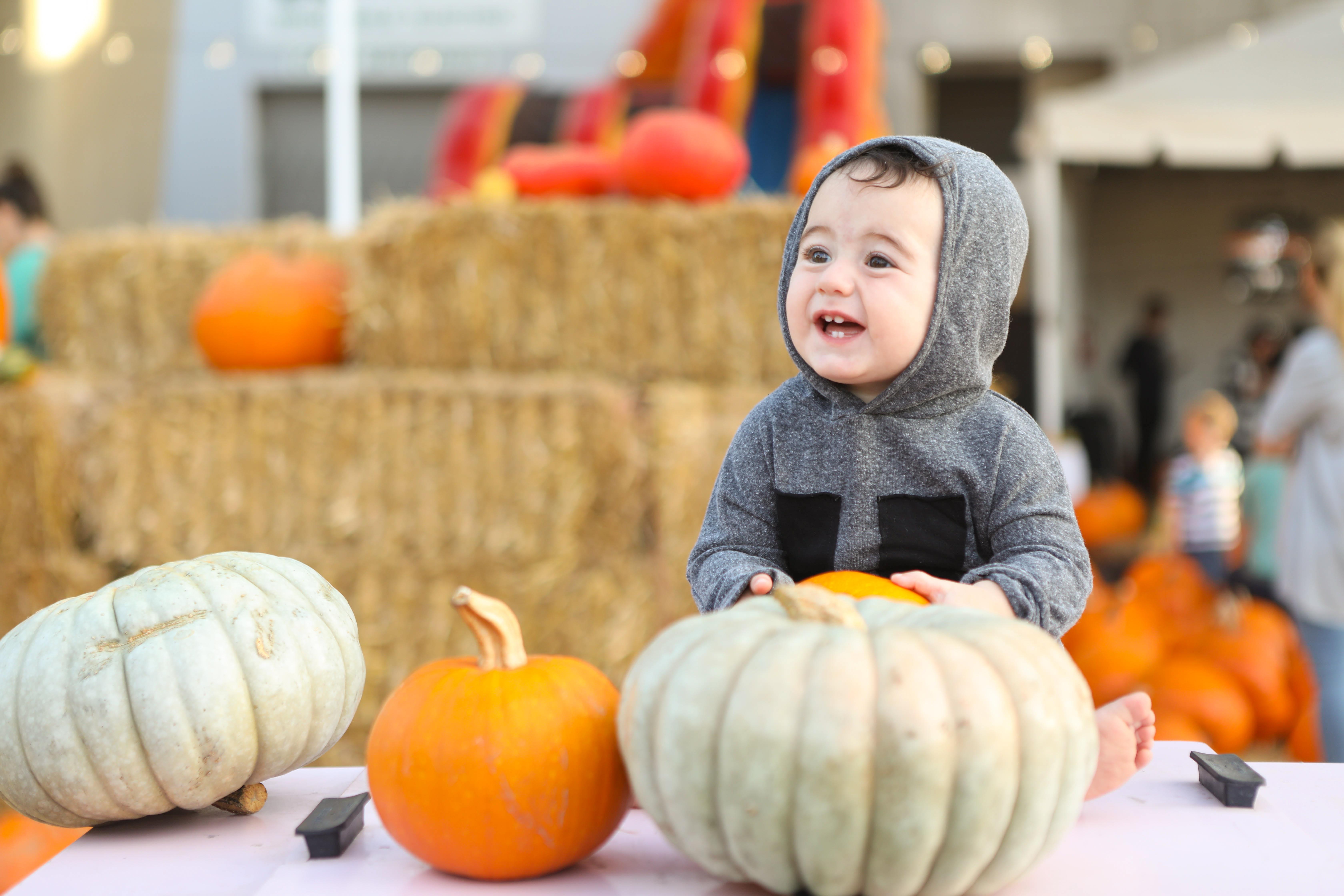 photo of little kid inside pumpkin