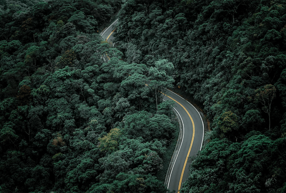 drone photo of a curved road passing though a forest