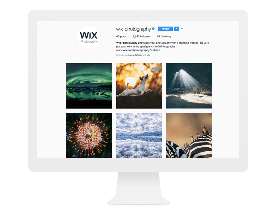 Wix Photography Instagram feed
