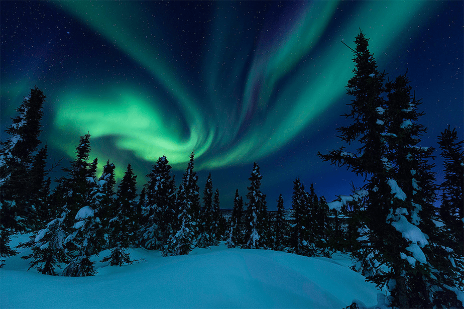 alaska northern lights above forest and snow